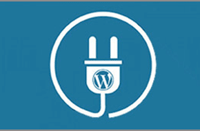 WordPress Custom Plugins