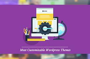 Customizable Themes