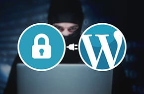 WordPress Plugin Security Full Disclosure vs Responsible